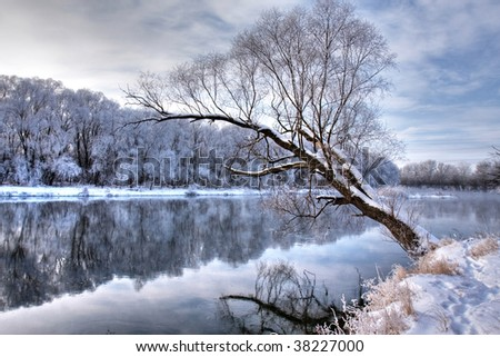 winter river with a tree standing alone - stock photo