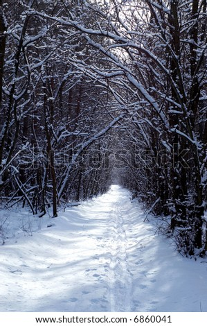 winter road in the park - stock photo