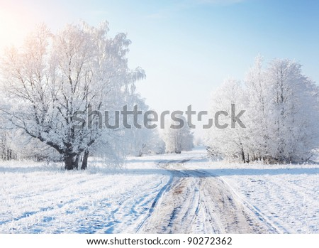 Winter rural road in a forest with frozen trees - stock photo