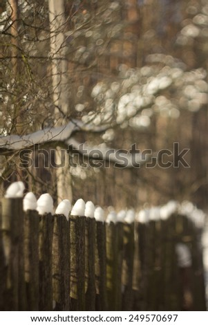 winter scene of a wooden fence with snow pine trees in the background - stock photo