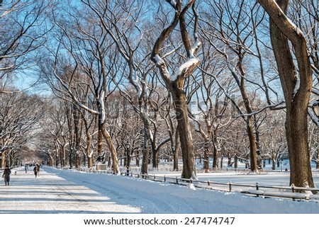 Winter scene on The Mall in Central Park. - stock photo