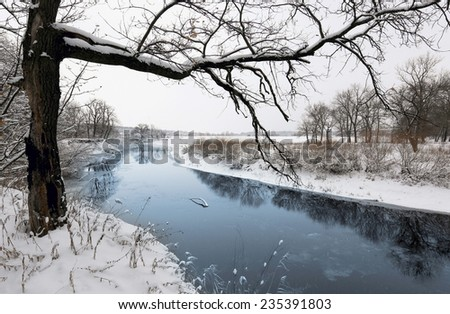 Winter scene with tree near river - stock photo