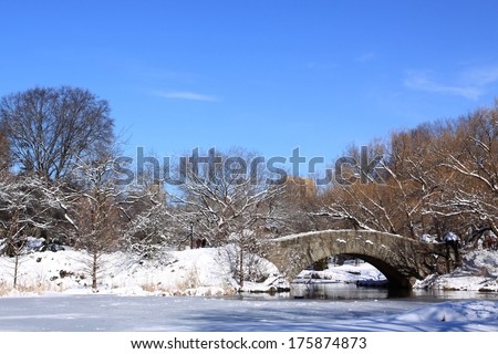 Winter Snow in Central Park, Manhattan, New York City - stock photo