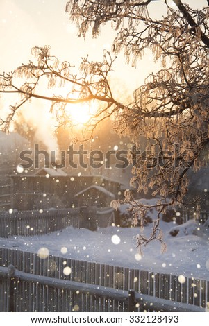 Winter. Snow, Snowfall. Outside the city, the village. Russia, the North, Siberia Tree in frost. Wooden old house. - stock photo