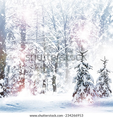 Winter. Snowfall. - stock photo