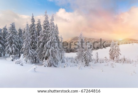 winter sunrise in the Carpathian mountains - stock photo