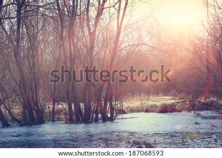winter sunset on the marsh - stock photo