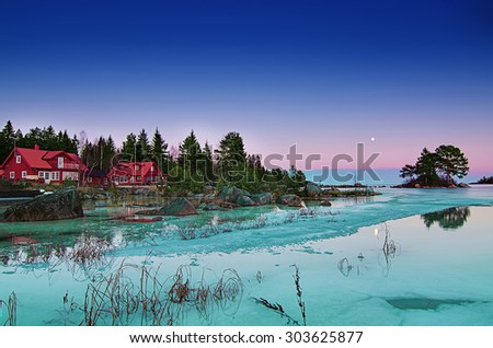 Winter swedish landscape at sea coast with pine trees and moon - stock photo
