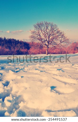 Winter time with snow in the country side in retro vintage style, rural natural scene - stock photo