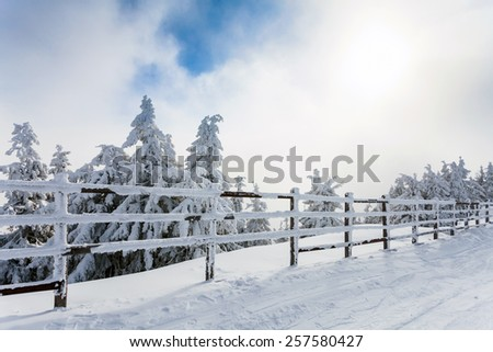 Winter trees and wooden fence covered in snow that borders a mountain road on winter season in Poiana Brasov, Romania - stock photo