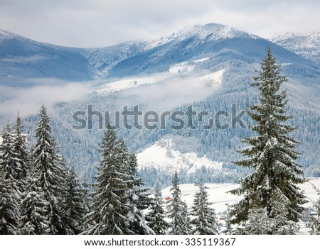 Winter trees in the mountains. Carpathians, Ukraine - stock photo