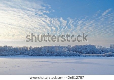 Winter water landscape - snowy winter trees along the bank of the winter frosted river in the thin cold fog at the sunset - winter picturesque landscape. - stock photo