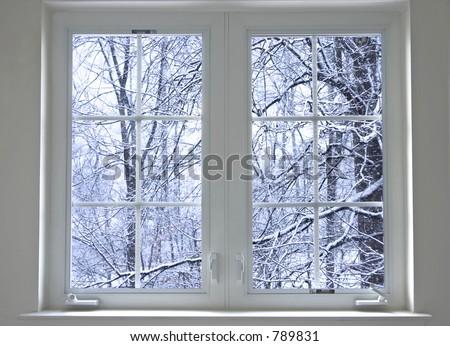 winter window - stock photo
