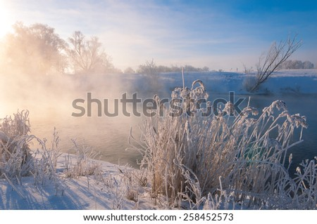 winter, winter-tide, winter-time,  hibernate, he coldest season of the year - stock photo
