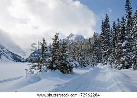Winter Wonderland in Alberta, Canada - stock photo