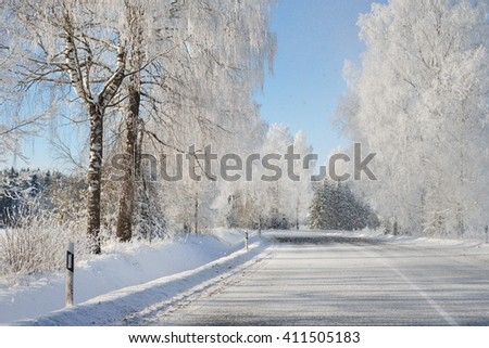 Winter wonderland snowcovered forest road with birch trees on a sunny day - stock photo