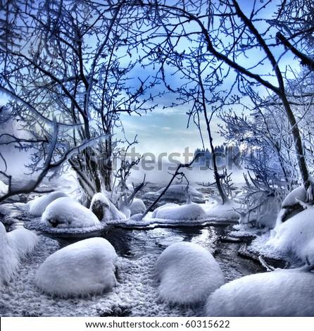 winter wonders - stock photo