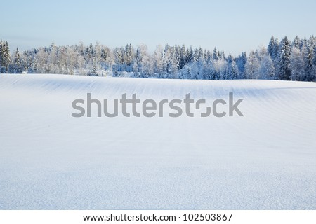 Winterscape from Finland - stock photo