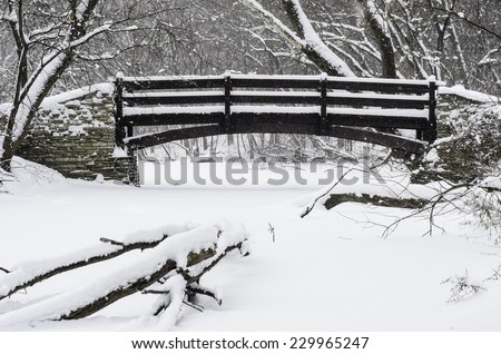 Wintry crossing in woods: Footbridge across a stream covered with snow in a winter snowstorm, with a fallen tree in foreground, in northern Illinois, USA, at the start of January - stock photo
