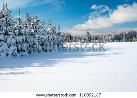 wintry landscape scenery with flat county and woods - stock photo