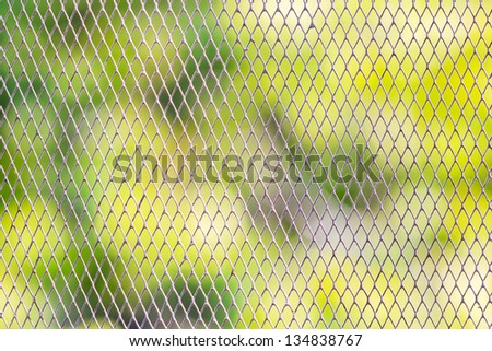 Wire mesh fence protected around the garden from animals - stock photo