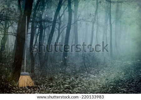 Witches' Sabbath,it is the witch's broom in a forest.  - stock photo
