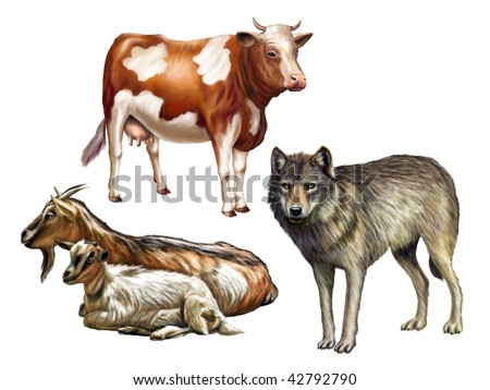 Wolf, cow and goats. Farm animals, original digital illustration. Clipping path included. - stock photo