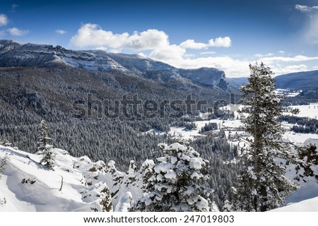 Wolf Creek Pass west slope snowy winter in Colorado - stock photo