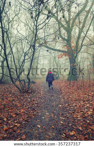 Woman and dog Walking in the foggy woodland in a winter morning - stock photo