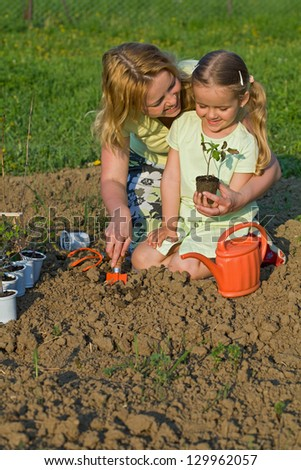 Woman and little girl planting seedlings together in the spring garden - stock photo