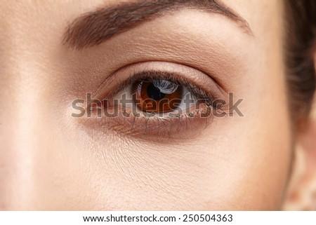 Woman brown eye with long eyelashes - stock photo