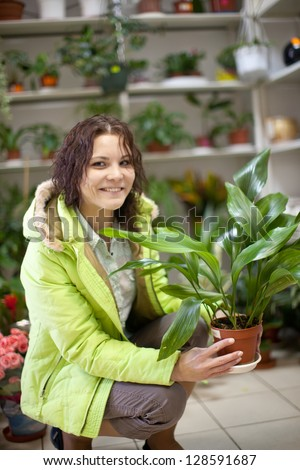 Woman chooses aspidistra flower in a flower shop - stock photo