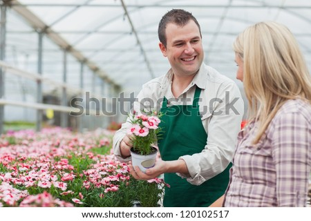 Woman deciding on flower with employee in greenhouse garden center - stock photo