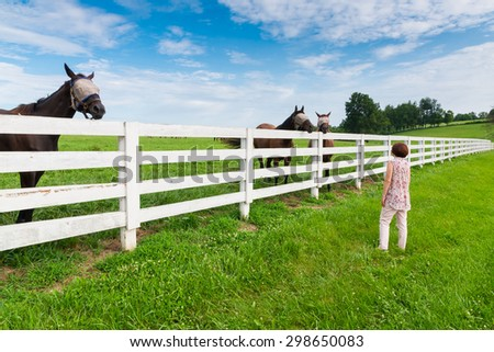 Woman enjoying countryside view with green pastures and horses. - stock photo