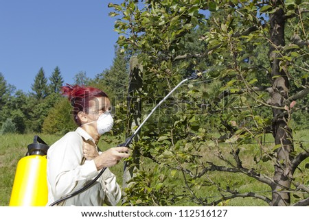 Woman gardener using a sprayer for applying an insecticide or fertilizer to fruit trees, on sunny morning - stock photo