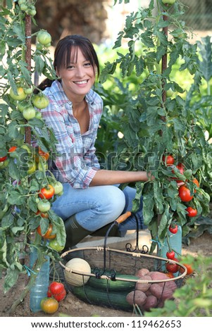 Woman growing vegetables - stock photo