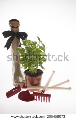 woman gum boots with garden tools and herb - stock photo