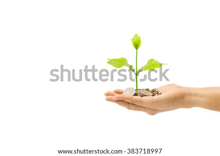 woman hand holding plant growing on coin isolated on white background,save money for prepare in the future,finance and money concept - stock photo