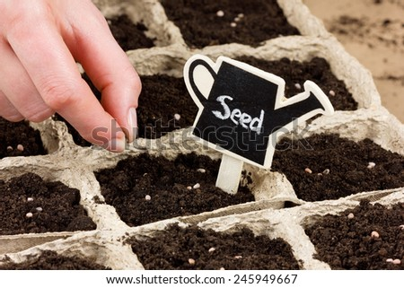 woman hand planting seed in the ground or soil. spring sowing. gardening. - stock photo
