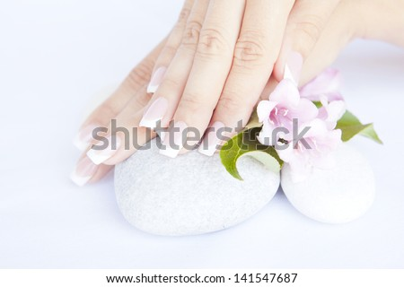 woman hands with beautiful french manicure nails and flower - stock photo