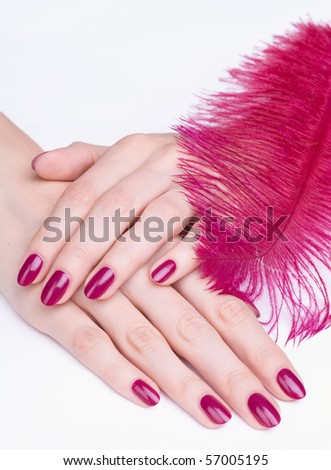 Woman hands with pink manicure and feather isolated - stock photo