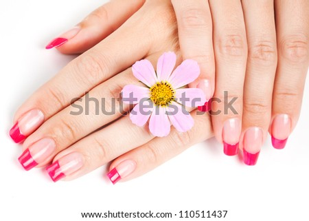 Woman hands with pink manicure, pink flower - stock photo