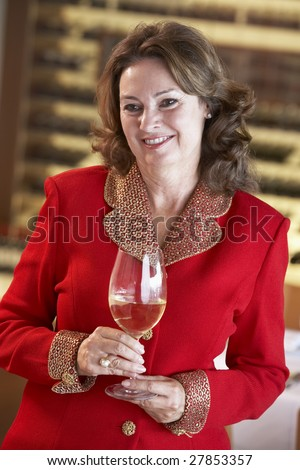 Woman Having A Glass Of Wine At A Bar - stock photo