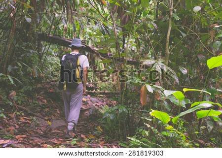 Woman hiker with backpack exploring the majestic jungle of Kubah National Park, West sarawak, Borneo, Malaysia. Selective focus, blurred motion, decontrasted and toned image. - stock photo