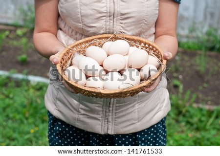 woman holding a basket with fresh farmer eggs - stock photo