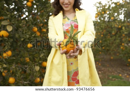 Woman holding a fresh orange towards the camera, while standing in an orange grove. - stock photo