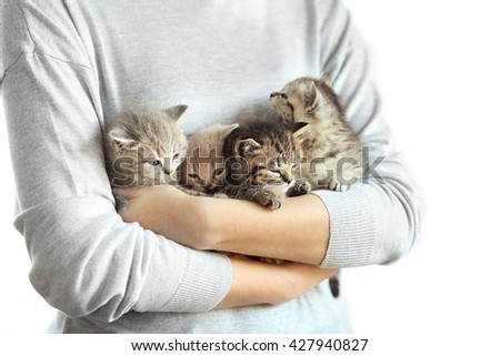 Woman holding small cute kittens - stock photo