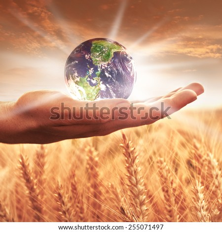 Woman holding the earh globe - stock photo