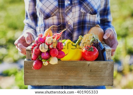 Woman holding wooden crate with fresh organic vegetables from farm - stock photo