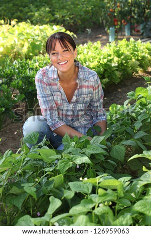 Woman in a vegetable patch - stock photo